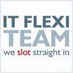 IT Flexi Team